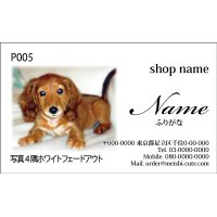 写真名刺P05(1箱100枚入)