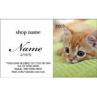 写真名刺P01(写真の配置のイメージです、1箱100枚入)