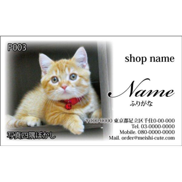 画像1: 写真名刺P03(写真の配置のイメージです、1箱100枚入)