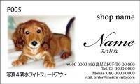写真名刺P05(写真の配置のイメージです、1箱100枚入)