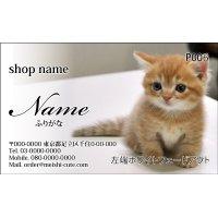 写真名刺P06(写真の配置のイメージです、1箱100枚入)